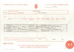 Mary Ann Waterman birth certificate 1867